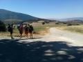 2013ago-RS_route_Umbria_(57)