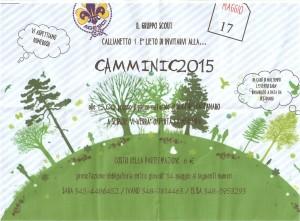 Camminic 2015